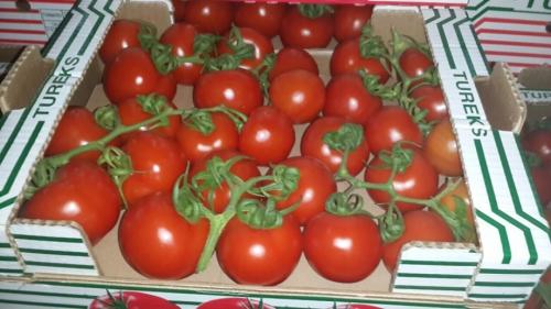 Турция нарастила экспорт помидоров в республику Белоруссию