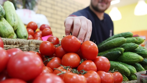 Поставки томатов в РФ изМарокко могут возрасти— Ткачев