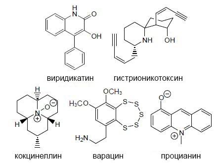 Виридикатин (грибной) 5dd85dcffd627
